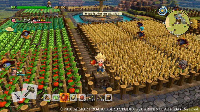 dragon-quest-builders-2-farming-6.jpg